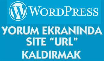 wordpress-url-kaldirmak